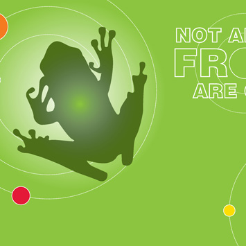 Frog Exhibit Graphic